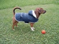 Kerbl Hundemantel -Teddy- 34cm