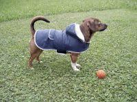 Hundemantel Teddy 48cm
