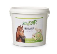 Stiefel -Ingwer- 1kg