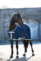 Horseware Amigo -Net Cooler-
